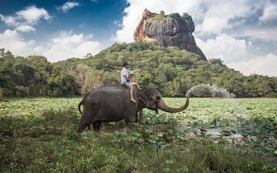 shutterstock_183716753-Man-and-child-riding-on-the-back-of-elephant-with-rock-of-Sigiriya-as-backdrop_-Sri-Lanka
