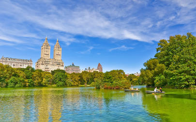 shutterstock_428883568-View-of-Central-Park-in-a-sunny-day-in-New-York-City