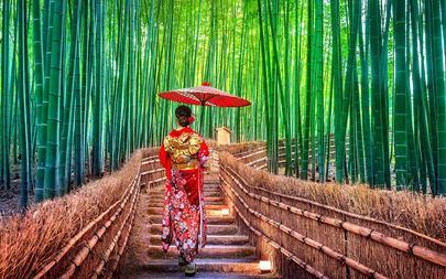 shutterstock_1028137558-Asian-woman-at-Bamboo-Forest-in-Kyoto_-Japan-